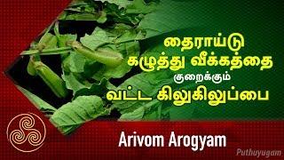 Arivom Arogyam 15-12-2018 PuthuYugam tv Show
