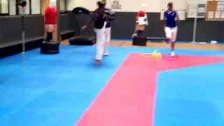 equipe de france de taekwondo french national team taekwondo calixte richard