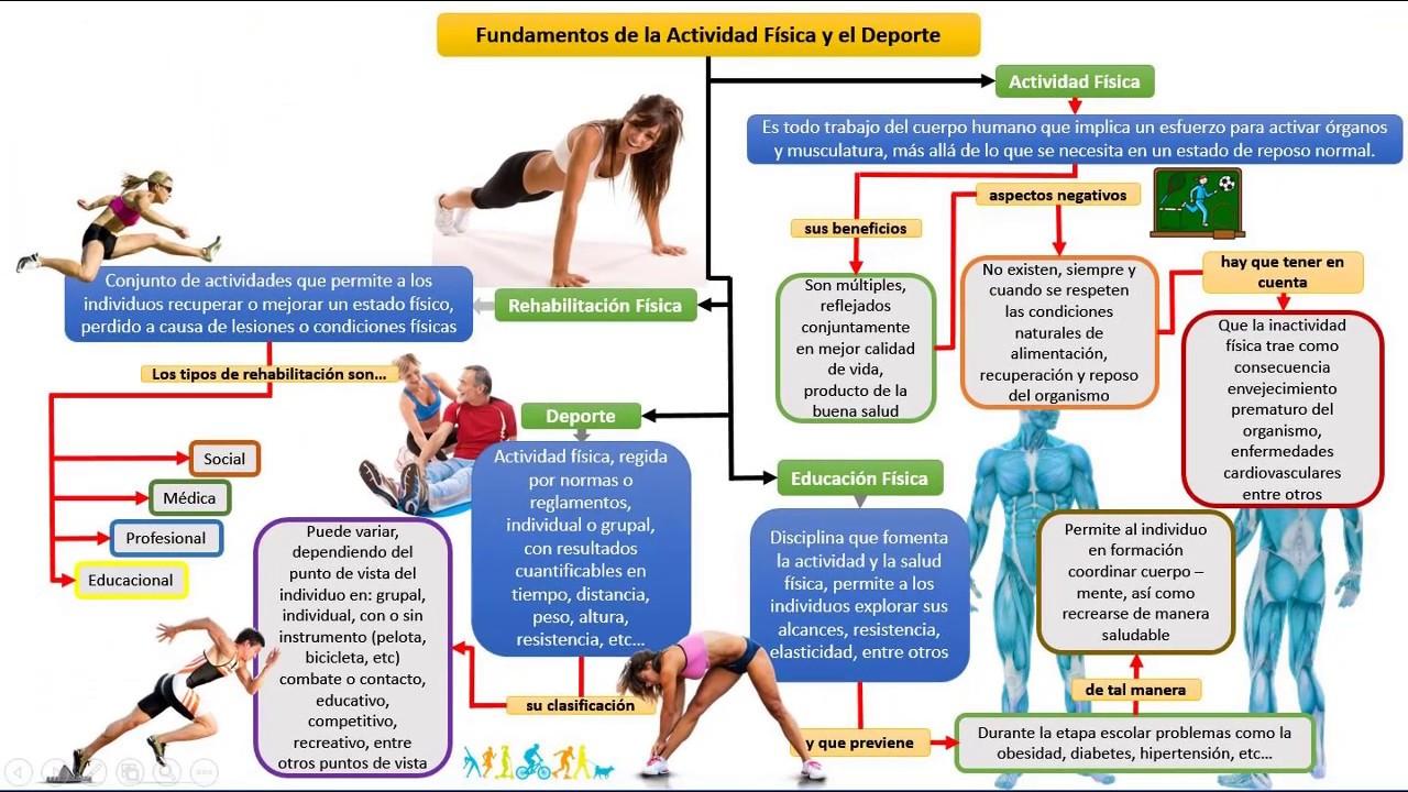 Fundamentos de la Actividad Física y el Deporte - YouTube