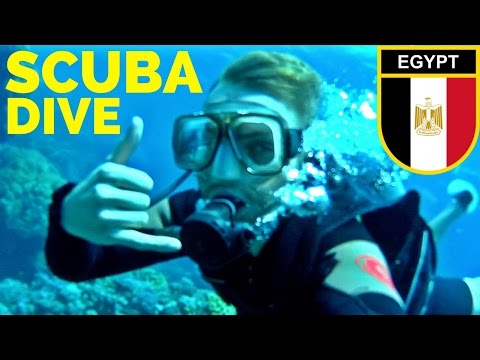 SCUBA DIVING the RED SEA // Egypt Travel مصر