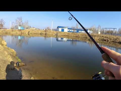 Рыбалка в БЕЛООЗЁРСКЕ и тест приманок