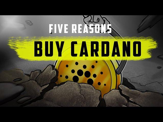CARDANO : The Sleeping Giant (5 reasons to buy)