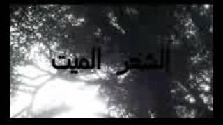 Didin klach 2016 3aweda bi9owa la canon 16
