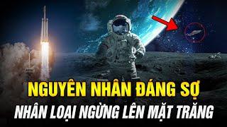 Vì Sao Nhân Loại Dừng Đổ Bộ Lên Mặt Trăng? Có Một Chủng Loài Khác Trên Đó? | Ngẫm Radio
