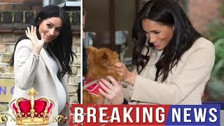 Meghan Fashion -  Meghan Markle 'FAT LADY': WATCH Meghan's reaction to HILARIOUS slip of the tongue