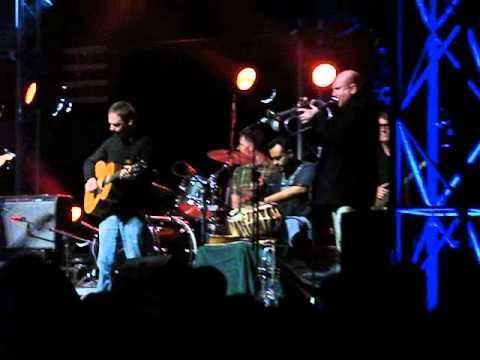 The Michael McGoldrick Big Band - Paddy In The Smoke - Shrewsbury Folk festival 2010.