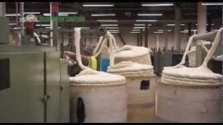 Processing Wool
