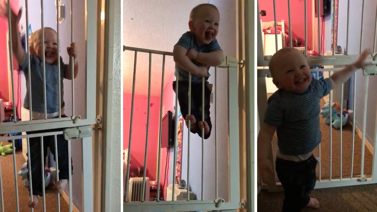 Houdini Baby Makes Great Escape From Gate Youtube