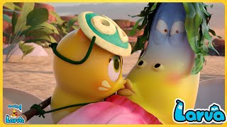 Larva Wig Compilation🍟 Fun Clips from Animation LARVA 🥞Larva Cartoons - Official 🥟Best Cartoon Movie
