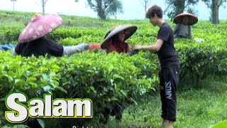 Video Harris J 'Good Life' Menghibur Pekerja Kebun Teh [Harris J 'Salam'] [9 Jun 2016] download MP3, 3GP, MP4, WEBM, AVI, FLV September 2018