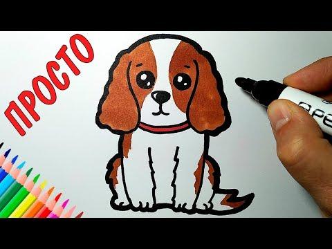 Как нарисовать СОБАКУ, Просто рисуем