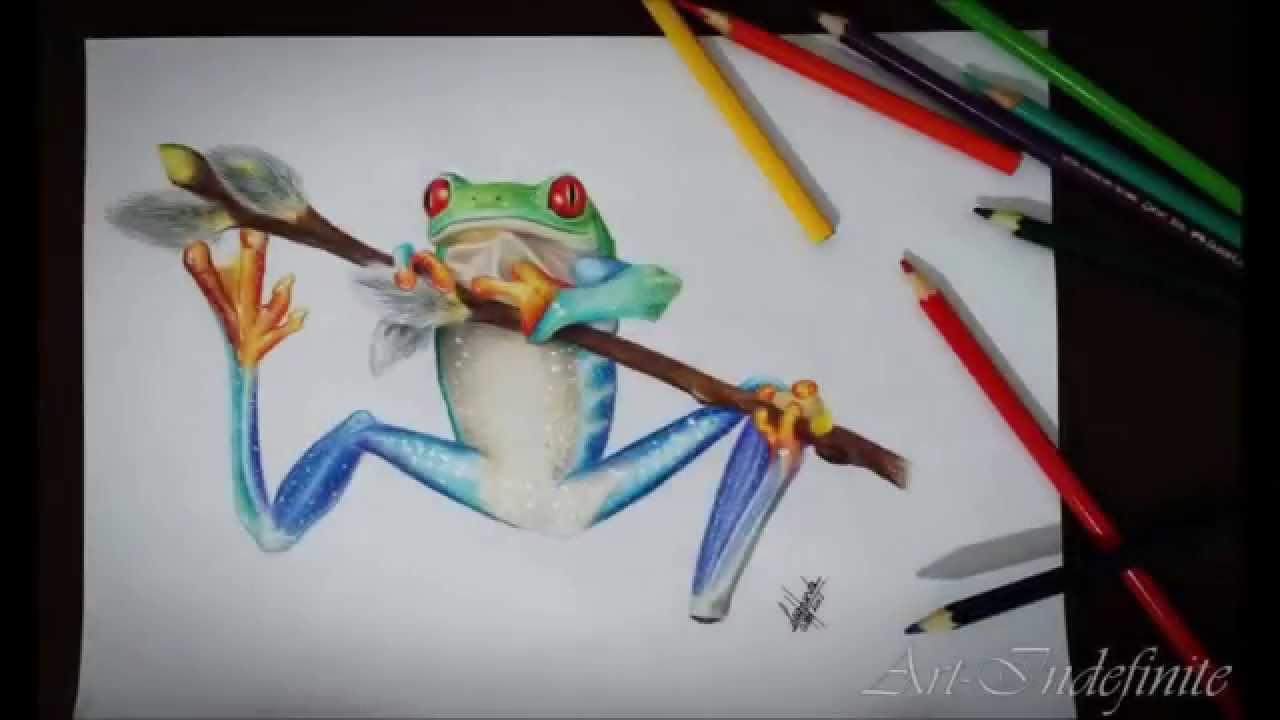 Tree Frog Red Eye Sapo Colorido Youtube