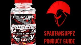 Blackstone Labs Anogenin Supplement Information Guide | Spartansuppz.com