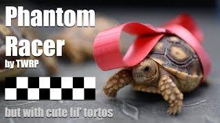 Phantom Tortoise