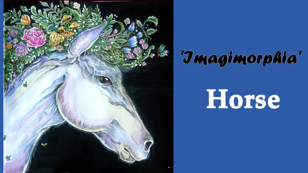 Colouring Imagimorphia By Kerby Rozanes Horse Raskraska Metamorfozy Youtube