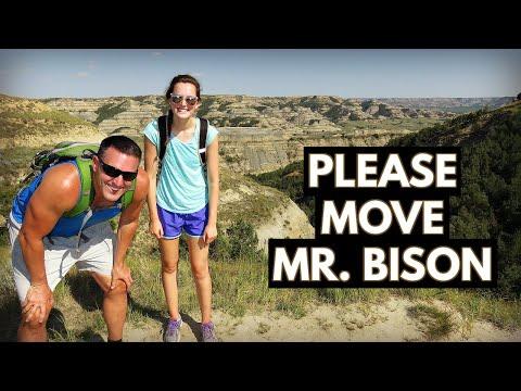 Theodore Roosevelt National Park - Buffalo Encounter (Vlog/Park #26)