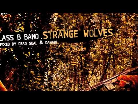 Class B Band - Strange Wolves - My Favorite Robot Records (MFR038)