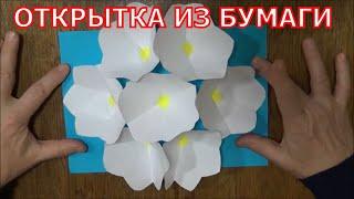 как сделать объемный цветок из бумаги видео