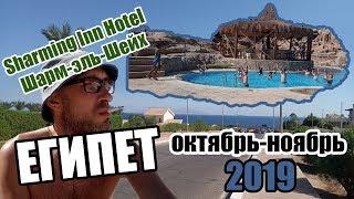 Египет в октябре ноябре 2019 Шарм эль Шейх Sharming Inn Hotel 4