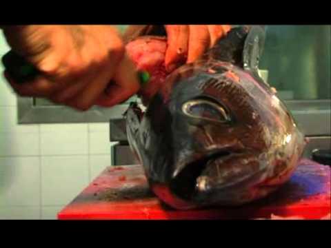 Se ci può essere a vermi di un salmone siberiani