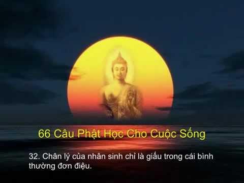 66 Câu Phật Học Làm Chấn Động Thiền Ngữ Thế Giới - Chùa Bát Nhã Bình Thạnh