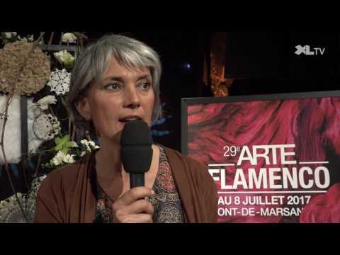 Le programme du 29ème festival Arte Flamenco dévoilé