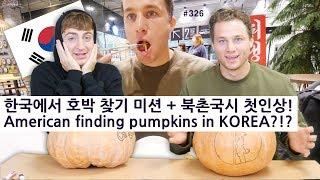 한국에서 호박 찾기 미션 + 북촌국시 첫인상! (326/365) American finding pumpkins in KOREA?!?
