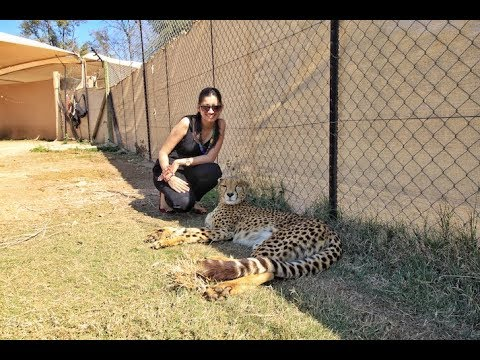 Top 9 Things To Do In Johannesburg