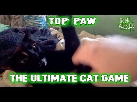 """""""Top Paw"""": The Ultimate Cat Game"""