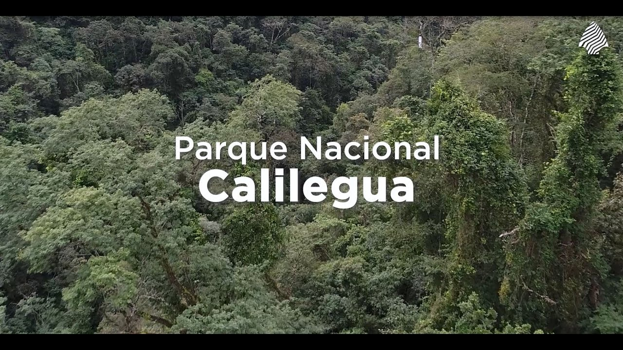 Parque Nacional #Calilegua
