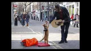 "Аудиокнига ""Джеймc Боуэн - Уличный кот по имени Боб"""