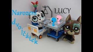 Littlest Pet Shop - LUCY: Epizoda 2 (7. díl) NAROZENÍ DVOJČÁTEK