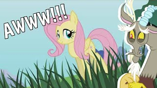 discord reacts to pony girl fluttershy version