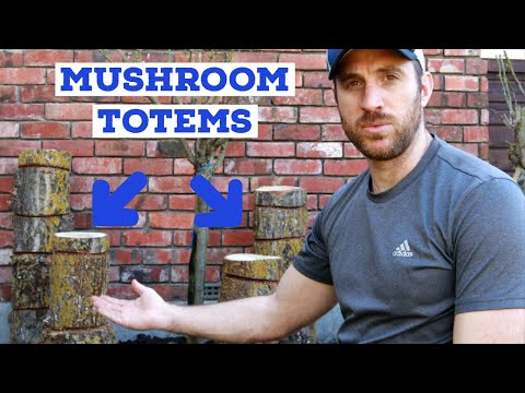 Growing Mushrooms On Log Totems - Growing Mushrooms At Home