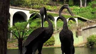 Madeira- Monte Palace- Tropical Gardens 2019