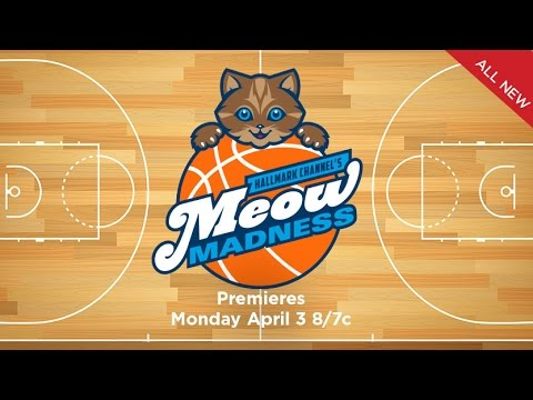 Meow Madness Virtual Reality Preview - Hallmark Channel