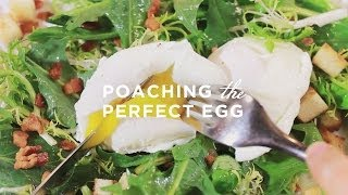 learn to cook poaching the perfect egg