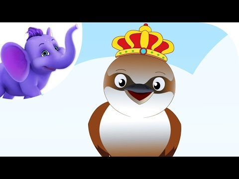 Kookaburra – Nursery Rhyme with Karaoke