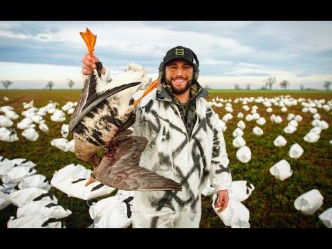 Chad Mendes and the Crew Hit the Late Season Goose Hunt In Cali!!