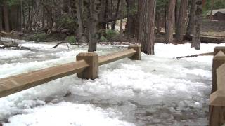 Yosemite Nature Notes - 9 - Frazil Ice thumbnail