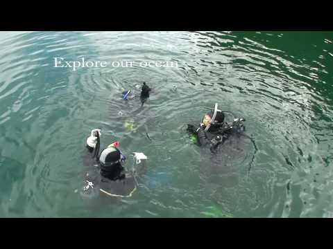 Rendezvous Dive Adventures diving Vancouver Island Canada
