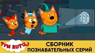 Три кота | Сборник познавательных серий | Мультфильмы для детей
