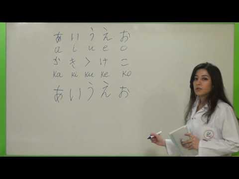 Japonca Dersi