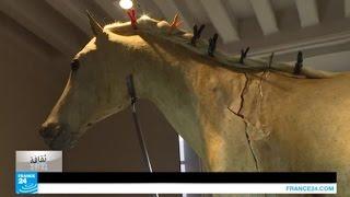 فرنسا: حصان نابليون الأخير قيد الترميم في متحف الجيش