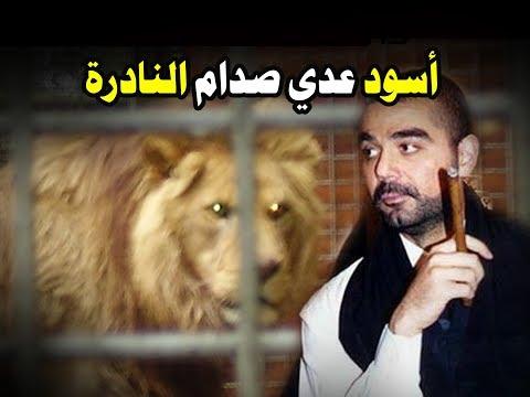 شاهد أسود عدي ابن صدام في الدقيقة  1:30 .. مقطع نادر
