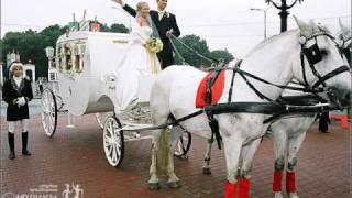 Ах эта свадьба.....wmv