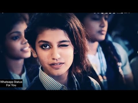 new-whatsapp-status-video-2018---priya-parkash-varrier---oru-adaar-love