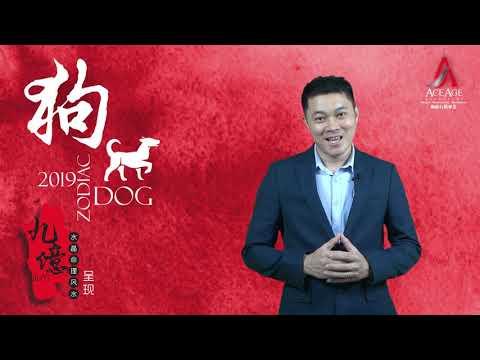 2019 生肖运程 第六集 鸡和狗