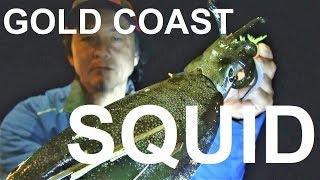 Gold Coast Squid fishing / eging Rocky D lure fishing Vol.87