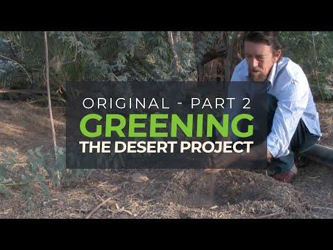 Greening the Desert II